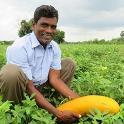 Farmers Producers Organization