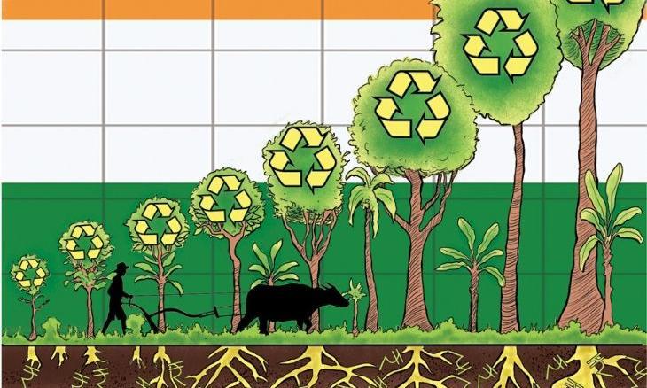 Agroforestry Economics