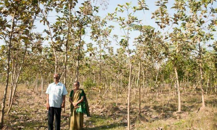 World Environment Day: The Bounty of a Barren Land