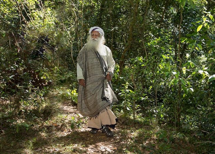 Agroforestry Makes the Farmer Rich and Saves the River