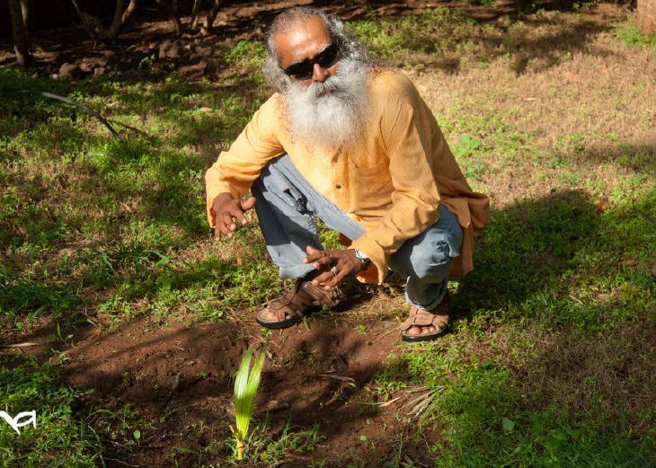 saving-indias-soil-through-better-farming
